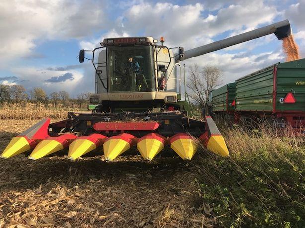 Przystawka do kukurydzy 6rzedow ZIEGLER Corn