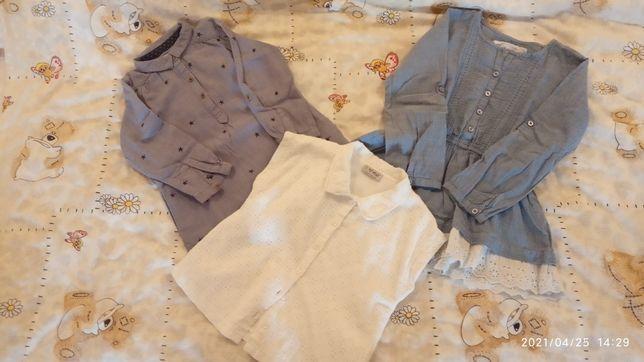 Сорочка, блузка, рубашка, одяг,вещи