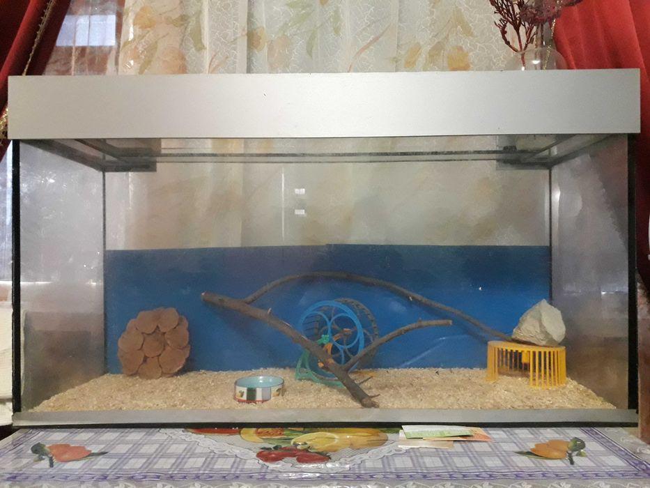 Для ёжика ,морской свинки и др. аквариум Харьков - изображение 1