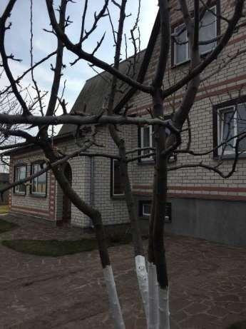 Продам будинок в смт.Варва.