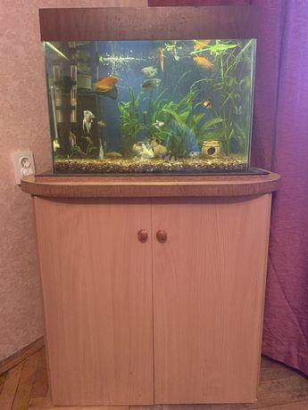 Продам аквариум 100л с тумбой