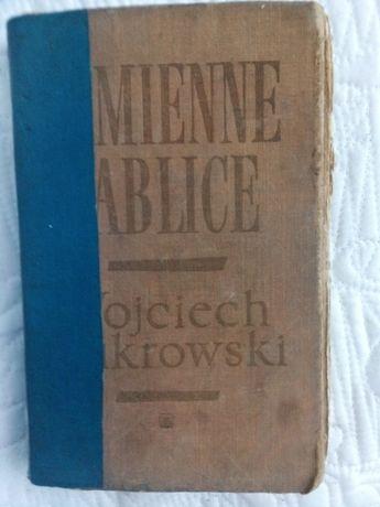Kamienne tablice, Wojciech Żukrowski, część pierwsza