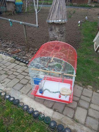 Клетка для попугаев и птиц