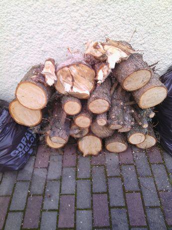 Drewno na ognisko