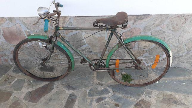 Bicicĺeta Pasteleira