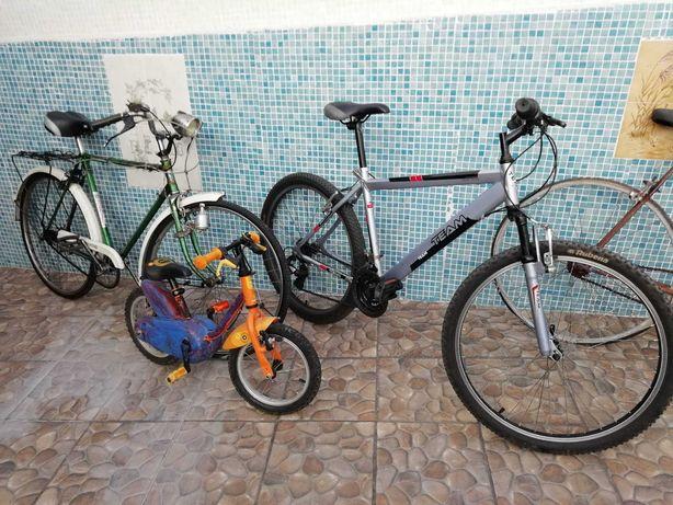 Conjunto de Bicicletas Boas e Baratas Tudo Pelo Valor de Uma