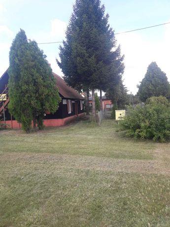 Dom w Złotori z dużą działką