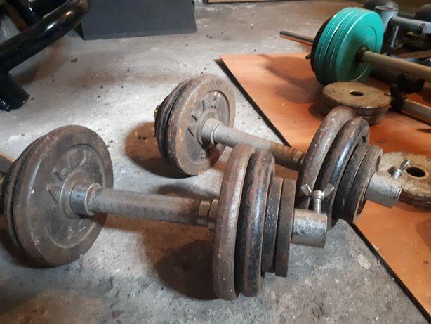 Hantle żeliwne 2x13kg 26kg