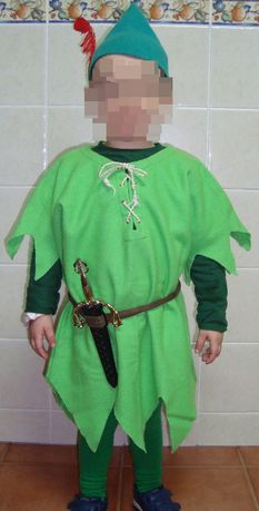 Fato carnaval Robin dos bosques