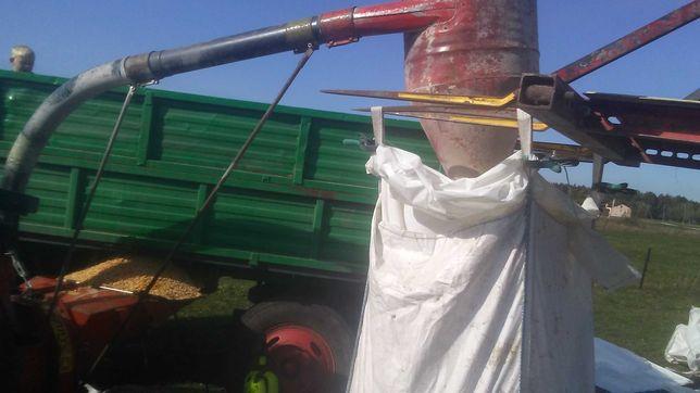 Srutowanie kukurydzy na ccm srutownikiem nożowym gruber 2000