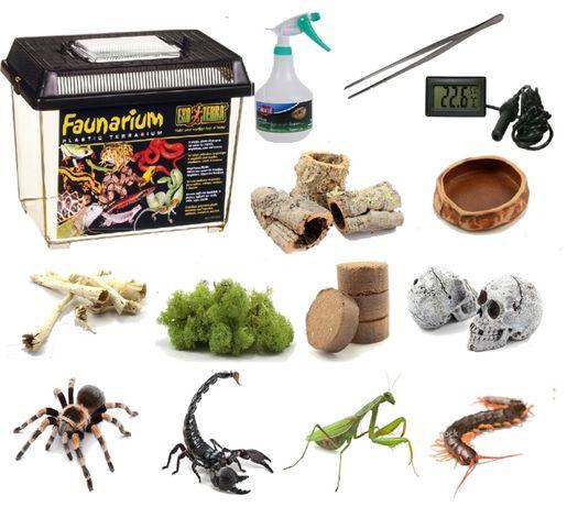Zestaw do hodowli ptaszników skorpionów 10 rzeczy terrarium 30x19x20,5