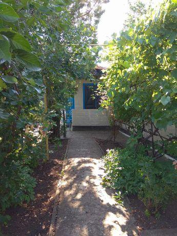 Продам дом в г.Гуляйполе Степна №4