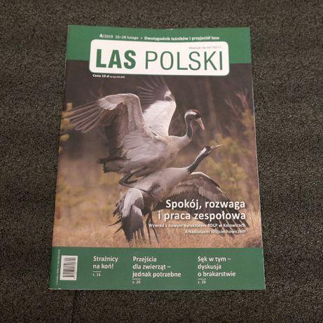 Las Polski 2019 nr 4