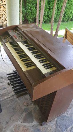 Organy Eminent Solina p240