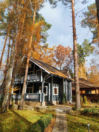 Аренда дом из бруса в лесу Лебедевка