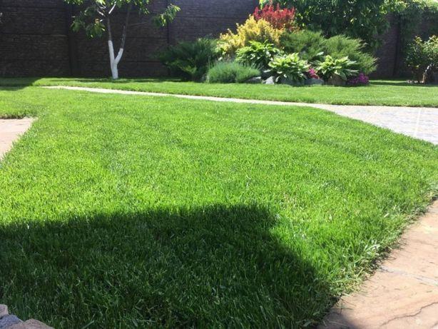 Автополив, рулонный газон, укладка тротуарной плитки, благоустройство