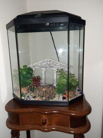 Vendo aquário para peixes