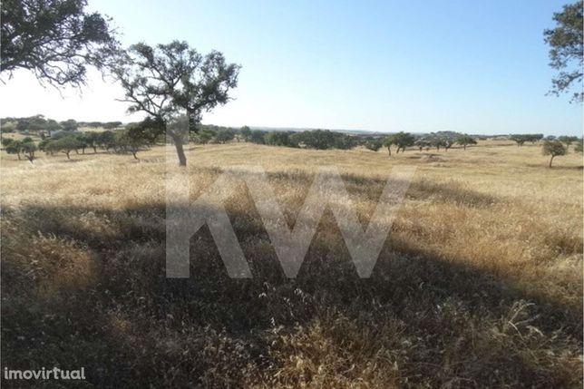 Terreno à venda com 7,9 ha - Ourique