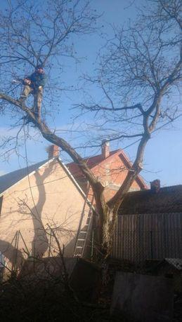Обрізка дерев та демонтаж