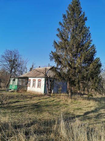 Дом 50 км. от Киева