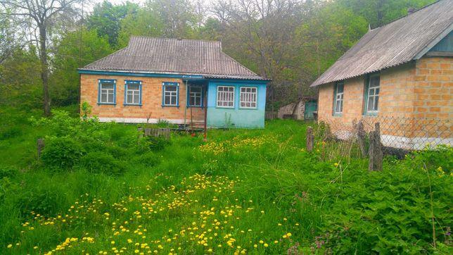Хата у селі Кошмак