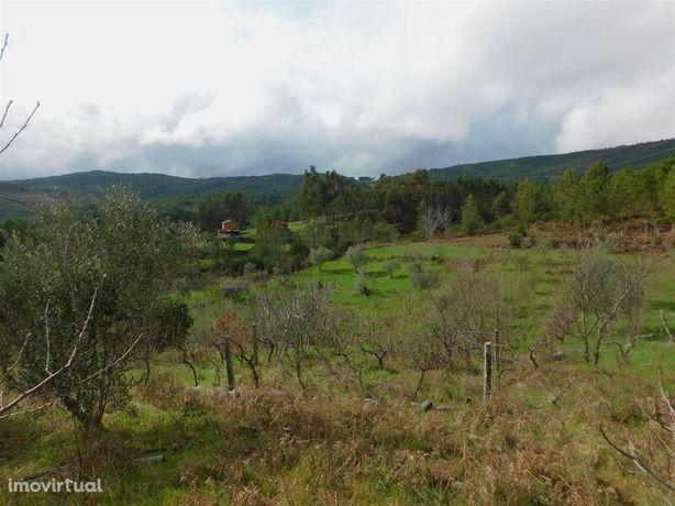 Terreno Agrícola Erada Covilhã