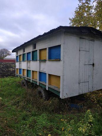 Продам павільйон для бджіл