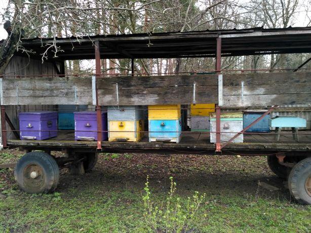 Продам две платформы для пчел .Пчелоплатформы