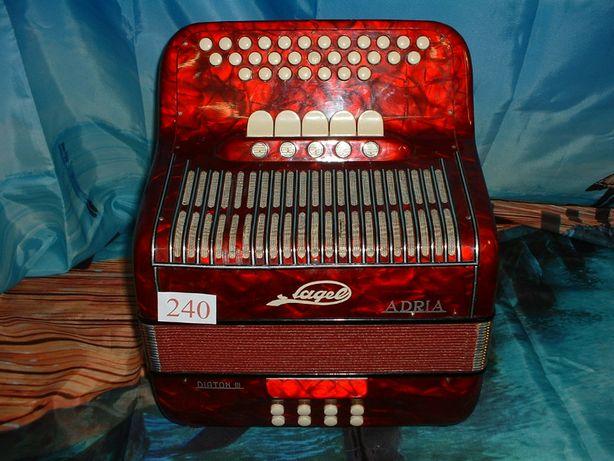 Avenda concertina n.240