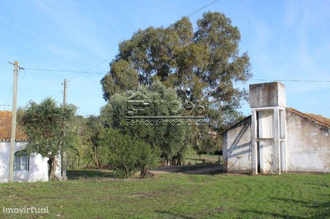 Quinta Centenária com 9 hectares - Azambuja