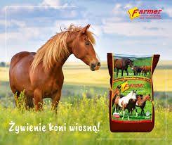 Pokarm, pasza ,granulat dla koni