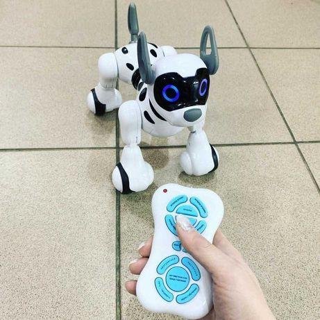 Робот - собака на радиоуправлении