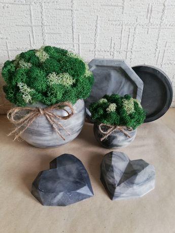 Набір кашпо з стабілізованим мохом
