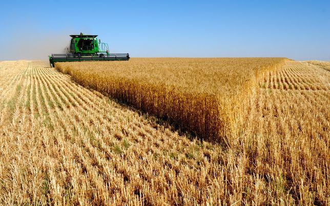 Продажа фермерского хозяйства 500 га.