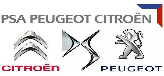 Diagnostyka komputerowa Peugeot Citroen DS
