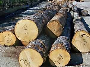 Drewno konstrukcyjne/ więźby dachowe/ deski