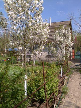 Дом, дача возле Днепра, Каневский район,