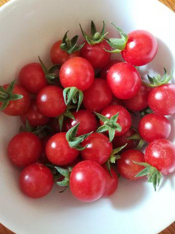 Pomidory ciekawe odmiany nasiona