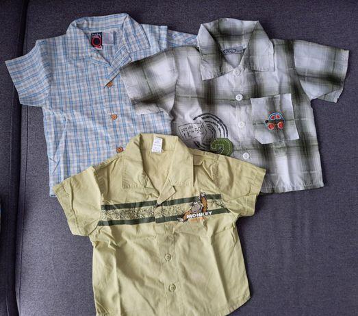 Koszule dla chłopca 86/92