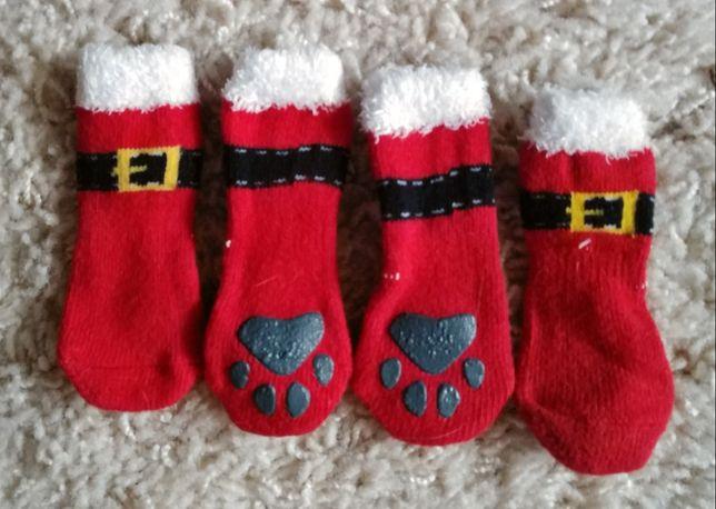 Skarpetki świąteczne dla mini yorka chihuahua
