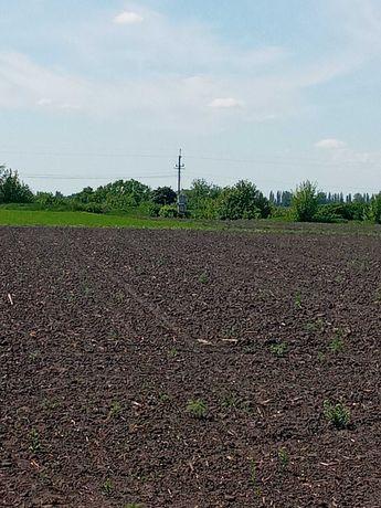 Продам земельну ділянку 25 соток  с.Стави