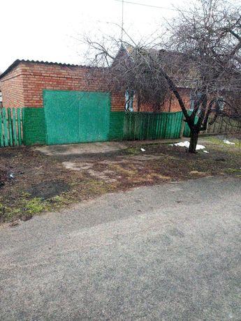 Пол Дома с.Преднипровское