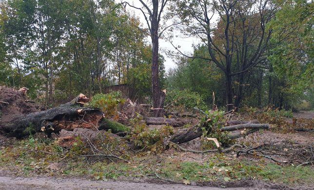 Wycinka drzew, rębak, wywóz karp, czyszczenie działek