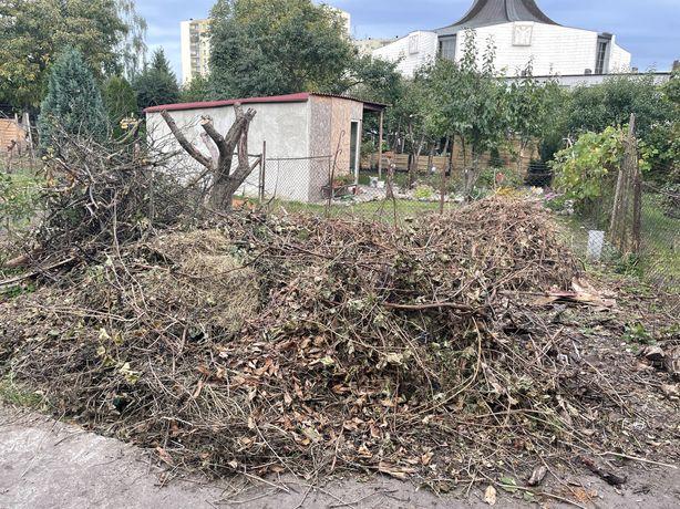 Trawa, bio odpad na kompostownik