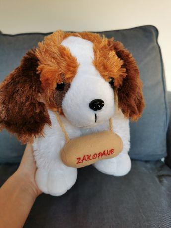 Pies - poduszka bernardyn 35 cm, pluszowy piesek, maskotka przytulanka