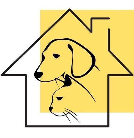 Pet Sitting/Estadia para animais
