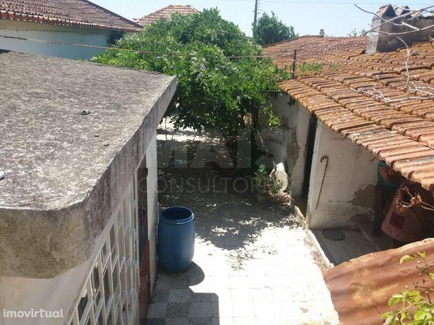 Moradia T3 com terreno, adega e arrecadação em Aveiras de Baixo