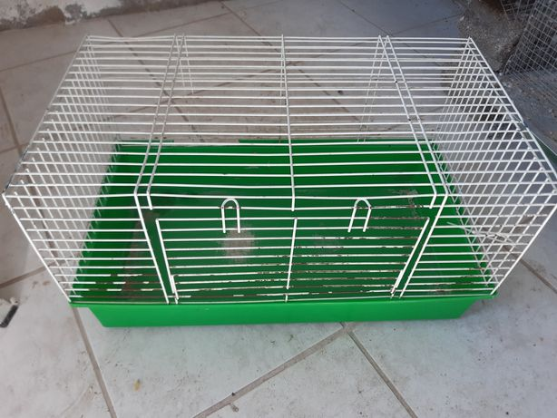 Gaiola grande roedores
