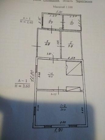 Продам будинок в Сосниці