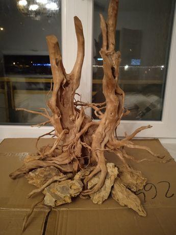 Korzeń do akwarium/korzenie/Red Moor/aranżacja do akwarium